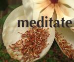 Meditate copy